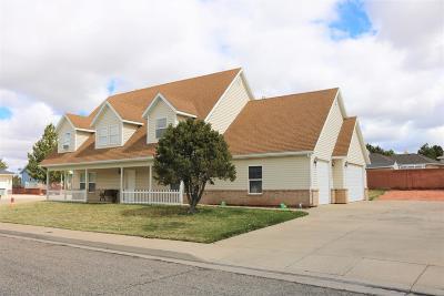Cedar City Single Family Home For Sale: 295 S Staci Ct