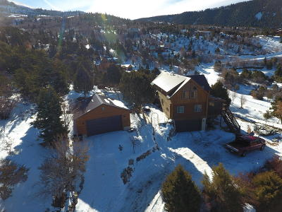 Cedar City Single Family Home For Sale: 838 E High Cedar Highlands