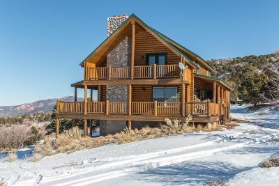 Cedar City Single Family Home For Sale: 1134 E High Valley View Cir
