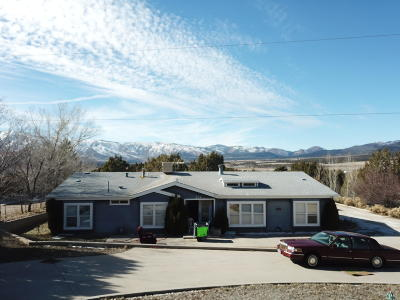 New Harmony Single Family Home For Sale: 224 S 3900 W
