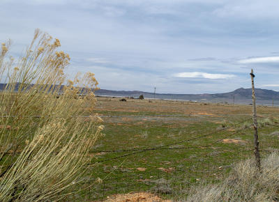 Parowan UT Residential Lots & Land For Sale: $84,500