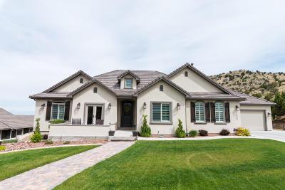 Cedar City Single Family Home For Sale: 793 E Canyon Ridge Dr