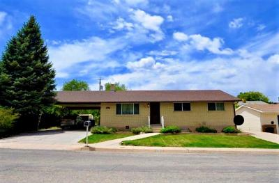 Single Family Home For Sale: 376 S 1000 W