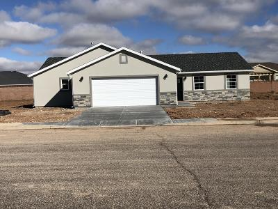 Cedar City Single Family Home For Sale: 63 S 4100 W