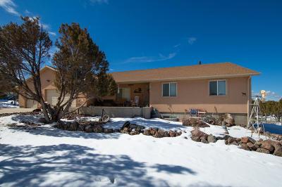 Parowan Single Family Home For Sale: 454 S 1150 W