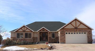 Parowan Single Family Home For Sale: 258 S 1025 W