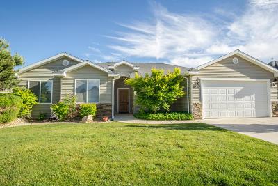 Cedar City Single Family Home For Sale: 4237 W 150 N