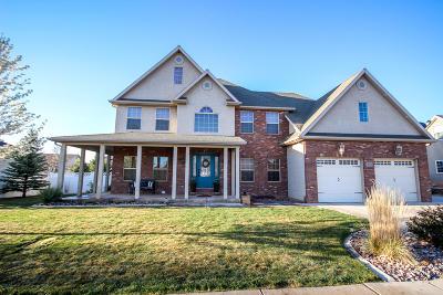 Cedar City Single Family Home For Sale: 3840 W 1400 N