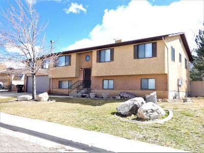 Cedar City Single Family Home For Sale: 2116 Buckboard Dr