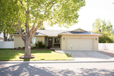 Beaver, Minersville, Milford Single Family Home For Sale: 370 N 1100 East