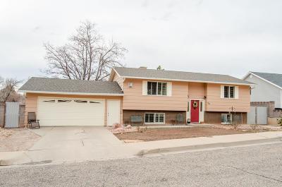 Cedar City Single Family Home For Sale: 56 S 580 E