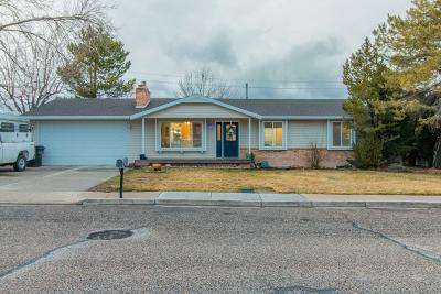 Cedar City Single Family Home For Sale: 979 N 400 W