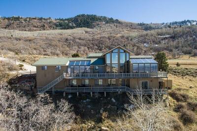 Cedar City Single Family Home For Sale: 1154 E High Mountain View Dr