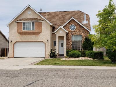 Cedar City Single Family Home For Sale: 472 W 1600 N