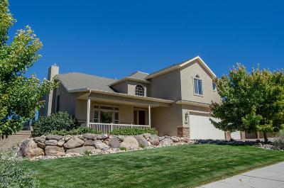 Cedar City Single Family Home For Sale: 887 E Nichols Canyon Rd