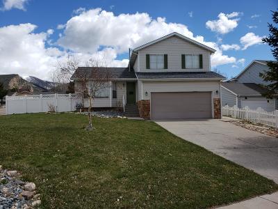Cedar City Single Family Home For Sale: 2074 N Chandler Dr