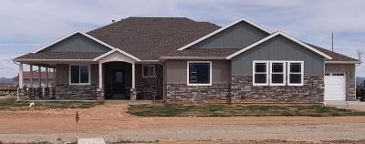 Cedar City Single Family Home For Sale: 2494 W 6100 N