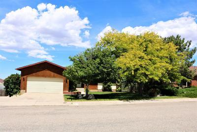 Cedar City Single Family Home For Sale: 2127 N Buckboard Dr