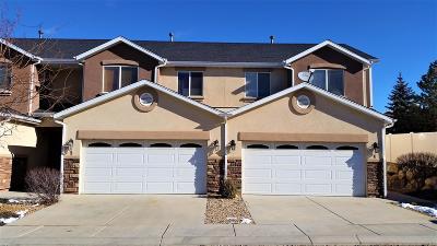 Cedar City UT Condo/Townhouse For Sale: $193,500