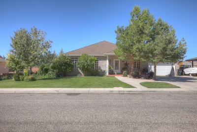 Cedar City Single Family Home For Sale: 616 S Morningside Cir