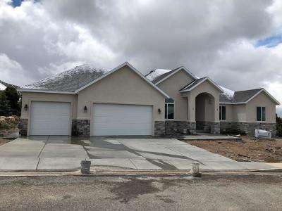 Cedar City Single Family Home For Sale: 834 E 2375 N