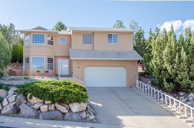 Cedar City Single Family Home For Sale: 85 N Guide Light Dr