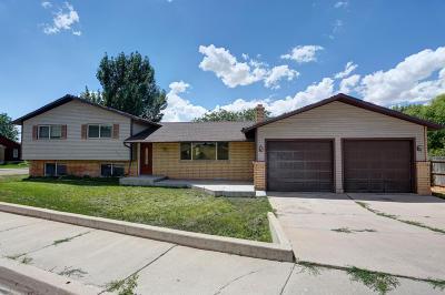 Cedar City Single Family Home For Sale: 1733 N Main St