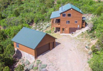Cedar City Single Family Home For Sale: 1005 E Cedar Highlands Dr