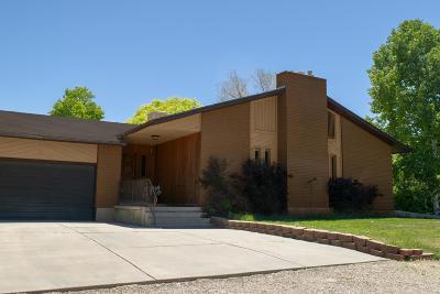 Parowan Single Family Home For Sale: 40 N 300 West