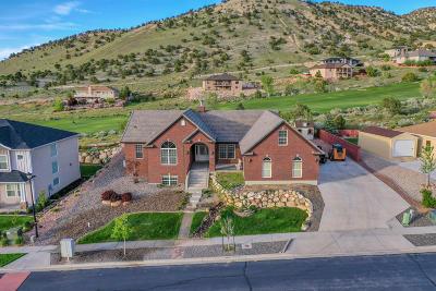 Cedar City Single Family Home For Sale: 455 E Hillview Dr