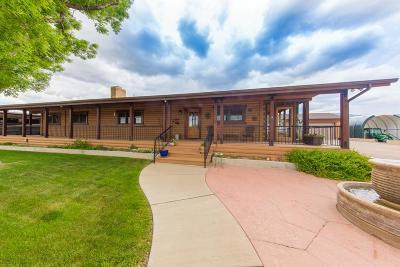 Cedar City Single Family Home For Sale: 4580 N Port Orr Lane 1050 West