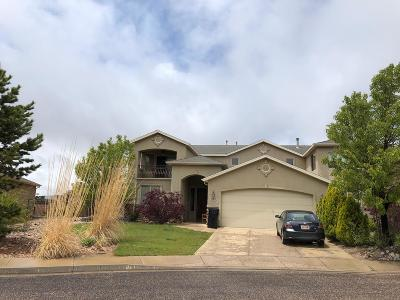 Cedar City Single Family Home For Sale: 1528 S West Canyon Drive