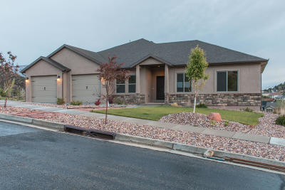 Cedar City Single Family Home For Sale: 1465 N Knoll St