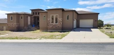 Cedar City Single Family Home For Sale: 1165 E Ashdown Forest Rd