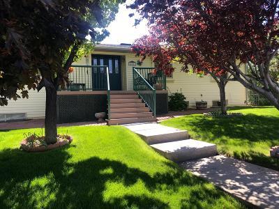 Cedar City Single Family Home For Sale: 402 N Skyline Dr