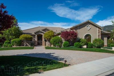Cedar City Single Family Home Accepting Backup Offers: 1091 E Nichols Canyon Rd