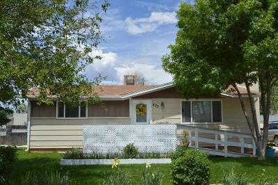 Enoch Single Family Home For Sale: 533 E Blue Sky S