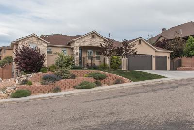 Cedar City Single Family Home For Sale: 605 S 2475 W (Nature View Dr)