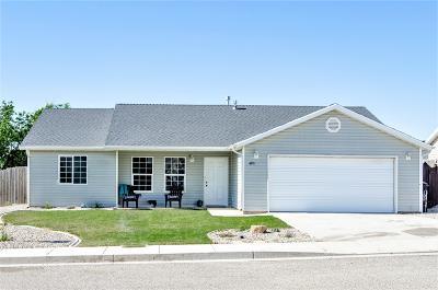 Cedar City Single Family Home For Sale: 480 W 2000 N