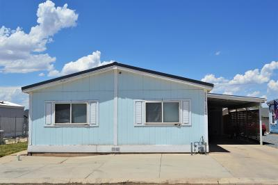 Cedar City Single Family Home For Sale: 668 W 1400 N