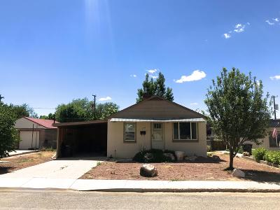 Cedar City Single Family Home For Sale: 375 N 600 W