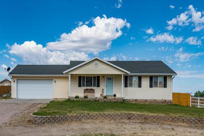 Cedar City Single Family Home For Sale: 4465 Sagebrush Drive