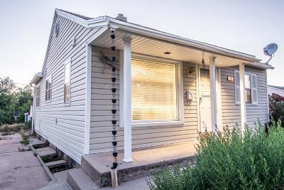 Cedar City Single Family Home For Sale: 484 S 225 W