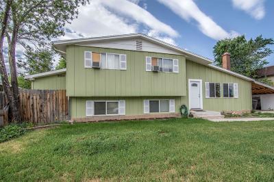 Cedar City Single Family Home For Sale: 937 W 400 N