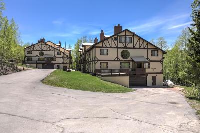 Brian Head Condo/Townhouse For Sale: 102 S Alpine Ln