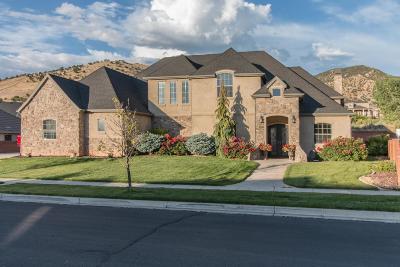 Cedar City UT Single Family Home For Sale: $534,900
