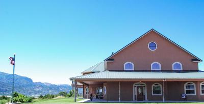 Kanarraville Single Family Home For Sale: 1161 W 400 N