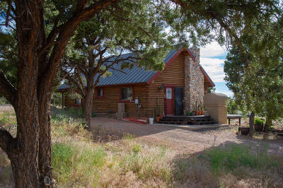 Parowan Single Family Home For Sale: 1502 S Red Canyon Rd