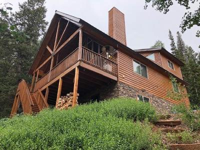 Brian Head Single Family Home For Sale: 807 N Columbine
