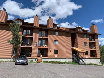 Brian Head Condo/Townhouse For Sale: 464 N Hwy 143